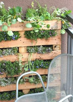 Repurposed Wooden Pallet Herb Garden and Salad Wall http://www.myhomerocks.com/2012/03/repurposed-pallet-furniture/