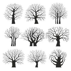 Collection of trees silhouettes photo