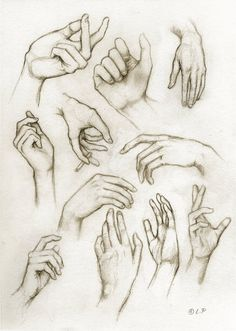 I want to do more hands and feet... actually just more anatomy studies