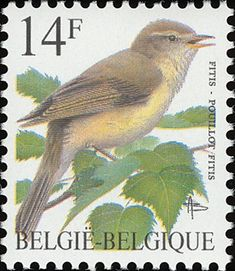 Willow Warbler stamps - mainly images - gallery format