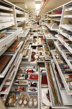 The Natural History Museum Finally Revealed What They Have Stored In The Back