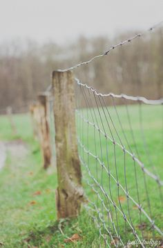 Wire fences Country Charm, Country Farmhouse, Country Style, Country Girl Life, Country Living, Mail Boxes, Country Lifestyle, Peaceful Life, Farms Living