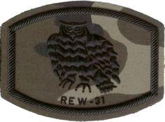 REWE 31- Regimiento de Guerra Electrónica Nº 31