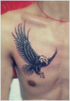 peito-aguia