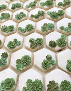 All the best succulent bridal shower ideas! Succulents are the new trend for weddings and celebrations. Find everything about succulent theme for the party Fancy Cookies, Iced Cookies, Royal Icing Cookies, Cupcake Cookies, Fondant Cookies, Summer Cookies, Heart Cookies, Valentine Cookies, Easter Cookies