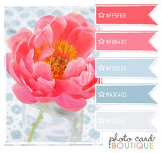 Color Crush Palette · 8.15.2011  Two tones of two main colors for beach color theme