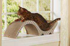Modern Cat Scratchers from Enchanted Home Pet