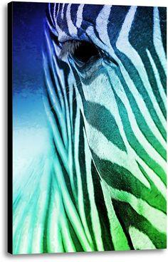 Picture of Zebra Colors. #wallart #homedecor #canvas #animalprint #zebra