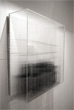 Robert Currie | 69,160 cm of Nylon monofilament and black acrylic, 2011