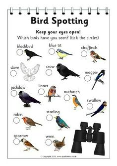 Zoo animals spotter form (Thank you, Keri! Can't wait to