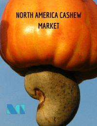 North America Cashew Market