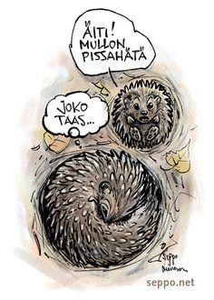 Siili – emo ja poikanen – talvihorros, keywords: siili emo poikanen talvi pesä talvihorros horrostaa Erinaceus europaeus pilapiirros