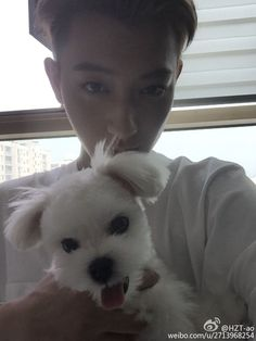 Tao and Candy (can our dogs be friends when I marry you?)