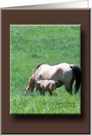 Buckskin Mare and Foal Deepest Sympathy for Loss of Father Card by Greeting Card Universe. $3.00. 5 x 7 inch premium quality folded paper greeting card. Sympathy cards & photo Sympathy cards from Greeting Card Universe will bring a smile to your loved ones' face. We will mail the cards to you or direct to your loved ones. Allow Greeting Card Universe to handle all your Sympathy card needs this year. This paper card includes the following themes: horse, horses, and equine. Los...