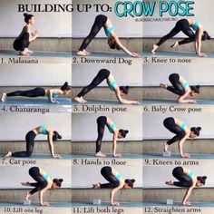Yin Yoga, Hatha Yoga, Namaste Yoga, Yoga Flow Sequence, Yoga Sequences, Yoga Routine, Yoga Crow Pose, Dolphin Pose Yoga, Basic Yoga Poses