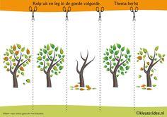 Leg de plaatjes van de herfstboom in logische volgorde , kleuteridee.nl…