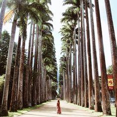 5 Travel Hacks To Help You Travel Smarter, Cheaper and Longer| BOTANIC GARDEN AT RIO DE JANEIRO MY PLACE!!! ENJOY IT  BRAZILIAN BRANDS DRICATURCA DELUXE.