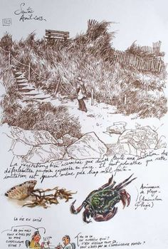 sketches and studies in plein air, my favorite Cool Sketches, Drawing Sketches, Drawings, Beach Sketches, Artist Journal, Artist Sketchbook, Travel Sketchbook, Nature Sketch, Nature Journal