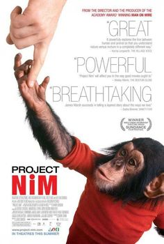 Proyecto Nim (2011) - FilmAffinity