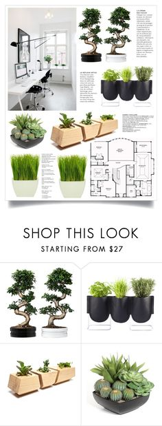 """""""Home # 28"""" by lookat ❤ liked on Polyvore featuring interior, interiors, interior design, home, home decor, interior decorating, Authentics, Dot & Bo, plants and planters"""