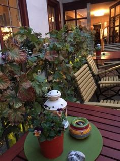 Kromer's Restaurant & Gewölbekeller, Erfurt - Restaurant Bilder - TripAdvisor
