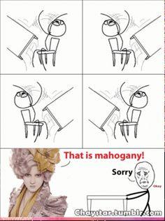 The Hunger Games - Memes - Google+