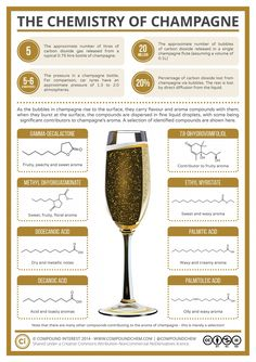 20 Million bubbles in a single champagne flute! The Chemistry of Champagne Science Chemistry, Food Science, Organic Chemistry, Chemistry Classroom, Science Room, Chemistry Experiments, Chemistry Teacher, Physical Science, Earth Science