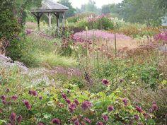 Pensthorpe's Wildlife Gardens from Norfolk