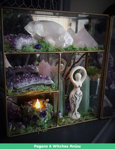 Crystal Garden - Crystal Terrarium - Healing Crystals - Terrarium Kit - Crystal Decor - Metaphysical - Raw Crystals and Stones - Witch Crystals And Gemstones, Stones And Crystals, Magick, Witchcraft, Wiccan Decor, Crystal Garden, Crystal Healing Stones, Crystal Decor, Witch Aesthetic