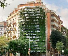 Jardins Verticais Pelo Mundo Vegetacao Em Meio Ao Concreto, Barcelona, Espanha.