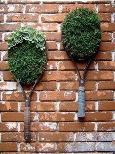 Na falta de vasos, coloque suas plantinhas em recipientes alternativos. #plantas #plants #green