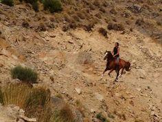 Rhut ruding in Spain