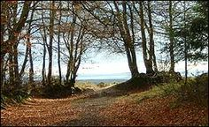The seaward view from Woodbury Common hill fort, between Sidmouth and Exeter   Devon   England