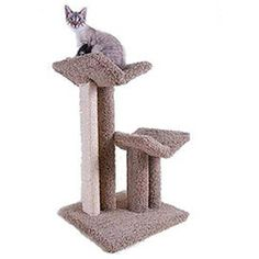 Pacific V Large Scratching Tree Price: $165.00 http://www.nipandbones.com/pacific-v-large-scratching-tree.html