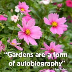 """""""Gardens are a form of autobiography."""" (course there's the wishful garden or the garden of your dreams, and the actual, """"yikes!"""" version some of us have!)"""