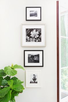 Like The Look Of This Vertical Gallery Wall In Black And White Silver Click