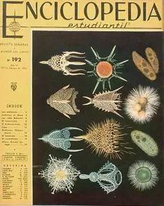 Enciclopedia Estudiantil - Nº 192 - 1964 - Codex - $ 30,00