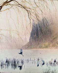 Don Hong-Oai #photography pic.twitter.com/c5k48ZUI4S
