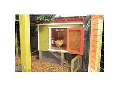 Learn How to Build a Chicken Coop with These Free Plans: Urban Chicken Coop Plan from The Tangled Nest