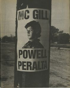 Powell Peralta (mike mcgill:)..AJF
