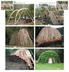 Log shelter.