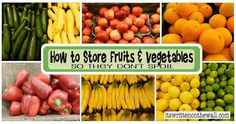 storing fruits and vegetables chart | Fabulous Tips on Storing Your Fruits & Vegetables (so they don't spoil ...