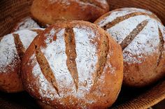 I'm sharing this recipe with you because I love you. It is probably my most valuable possession, because the promise of quick, fresh bread keeps people coming back to my house to keep me company. T…