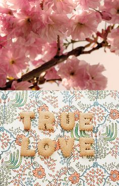 "Love the ""True Love"" cookies!  Image via FRYD Design Blog, from June 18, 2011."