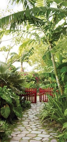 Golden Rock Inn on Nevis Island in the eastern Caribbean • architect: Raymond Jungles • photo: Marian Brenner