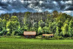 #Spring #field #forest #Vasteras #sweden 2015