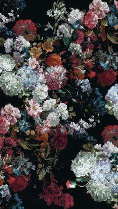 The post wallpaper backgrounds The post - Blumen ideen Garden Wallpaper, Flower Wallpaper, Wallpaper Backgrounds, Colorful Wallpaper, Coldplay Wallpaper, Tea Wallpaper, Black Wallpaper Iphone, Nature Wallpaper, Phone Backgrounds