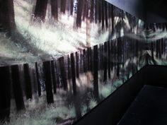Balbina Lightowler Bosque Infinito / instalación Palais de Glace, Buenos Aires, Argentina / 2013 www.lightowler.co...