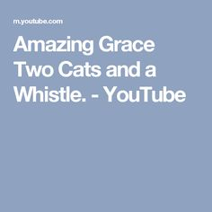 Amazing Grace Two Cats and a Whistle. - YouTube