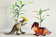 Prehistoric Plant Accessories - These DIY Dinosaur Planters by Mandy Crandell are Fiercely Fun Head Planters, Diy Planters, Planter Ideas, Home Crafts, Diy Crafts, Best Indoor Plants, Air Plants, Garden Whimsy, Urban Survival